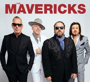 TheMavericks_366x332.jpg